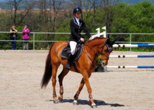 Equestrian clothing for the house riders