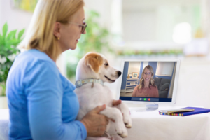 Better Book vet on call online to get the easiest services for your pet!
