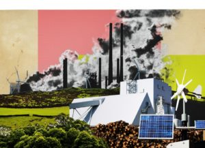 Best Carbon Offset Partner Program That Is Making A Change